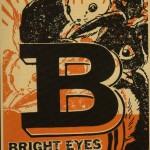 Bright Eyes [2003]