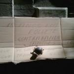 Mensaje en un cartón (VI)